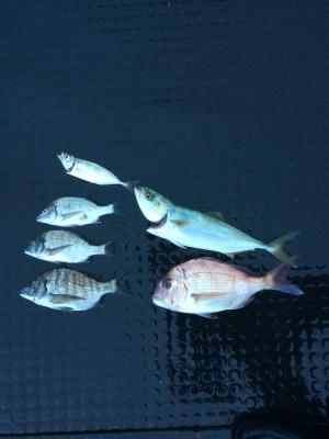 海香の2019年9月22日(日)4枚目の写真