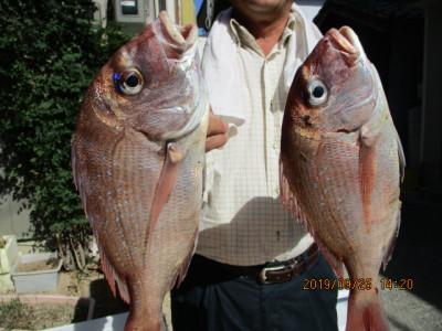 奥村釣船の2019年9月25日(水)2枚目の写真