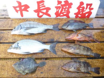 中長渡船の2019年9月26日(木)2枚目の写真