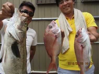 奥村釣船の2019年9月28日(土)3枚目の写真