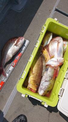 海皇丸の2019年9月18日(水)2枚目の写真