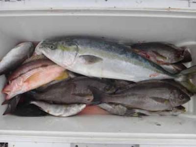丸銀釣りセンターの2019年9月26日(木)5枚目の写真