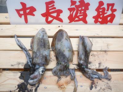 中長渡船の2019年10月20日(日)2枚目の写真