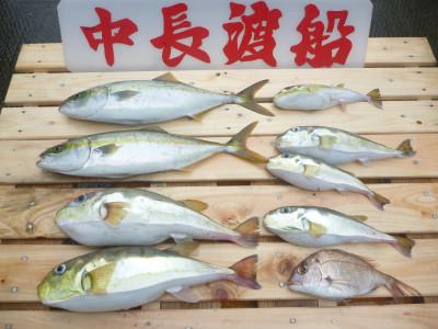 中長渡船の2019年10月21日(月)2枚目の写真
