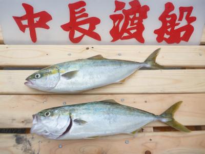 中長渡船の2019年10月23日(水)1枚目の写真