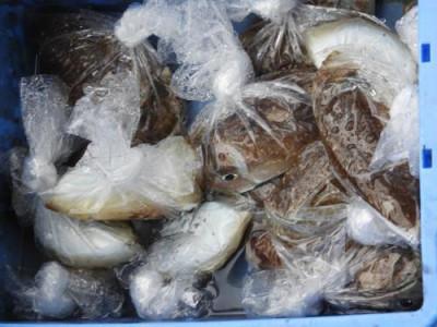 釣具の海友の2019年10月24日(木)5枚目の写真