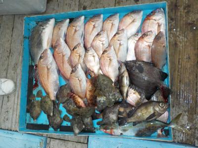 釣船 英造丸の2019年10月26日(土)1枚目の写真