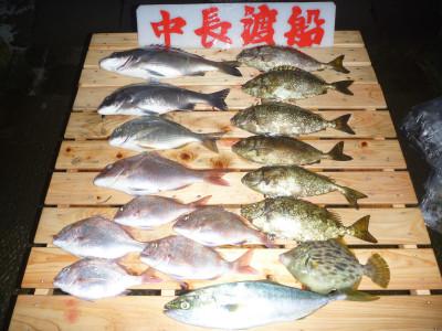 中長渡船の2019年10月26日(土)2枚目の写真