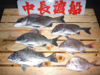 中長渡船の2019年10月26日(土)3枚目の写真