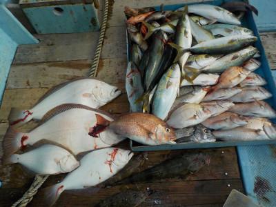 釣船 英造丸の2019年10月27日(日)1枚目の写真