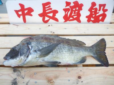 中長渡船の2019年10月27日(日)3枚目の写真