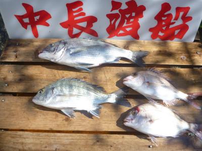 中長渡船の2019年10月28日(月)3枚目の写真