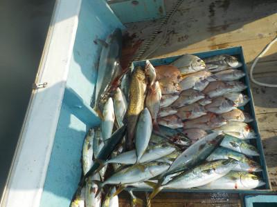 釣船 英造丸の2019年10月30日(水)1枚目の写真