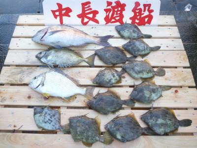 中長渡船の2019年10月31日(木)2枚目の写真