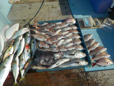 釣船 英造丸の2019年11月1日(金)1枚目の写真