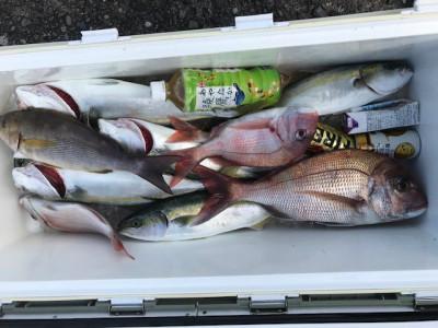 釣り船 黒潮丸の2019年11月14日(木)4枚目の写真