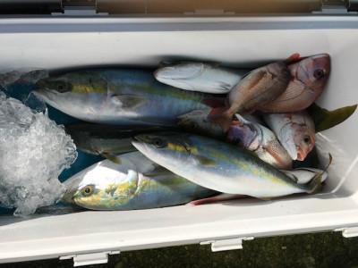 釣り船 黒潮丸の2019年11月15日(金)2枚目の写真