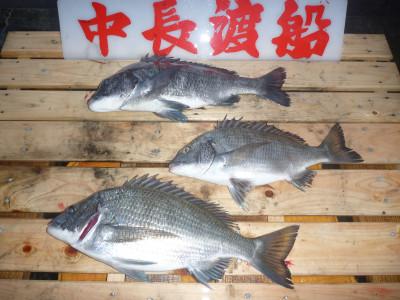 中長渡船の2019年11月16日(土)1枚目の写真
