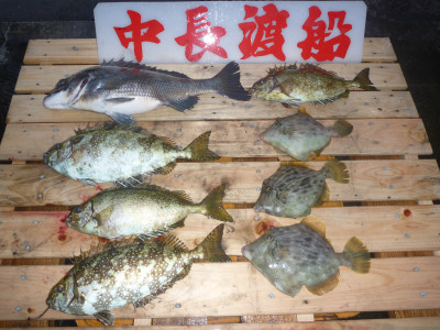 中長渡船の2019年11月16日(土)3枚目の写真