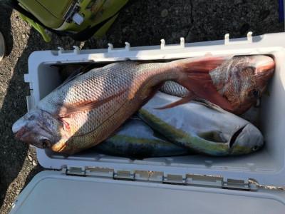 釣り船 黒潮丸の2019年11月17日(日)5枚目の写真