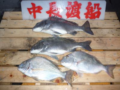 中長渡船の2019年11月17日(日)1枚目の写真