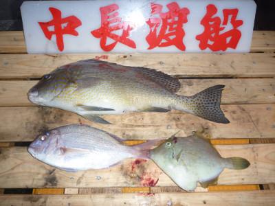 中長渡船の2019年11月17日(日)2枚目の写真