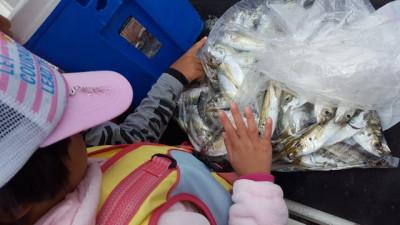 乙島丸の2019年11月3日(日)2枚目の写真