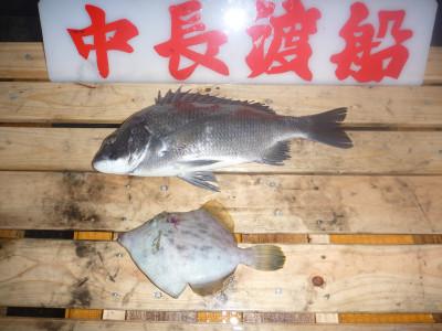 中長渡船の2019年11月21日(木)3枚目の写真