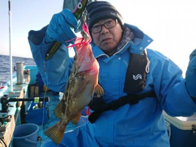 釣船 幌岩丸の2019年11月22日(金)2枚目の写真