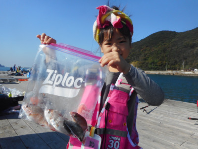 由良海つり公園&釣堀ランドの2019年11月23日(土)1枚目の写真