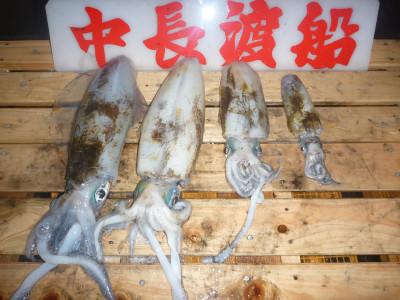中長渡船の2019年11月23日(土)3枚目の写真
