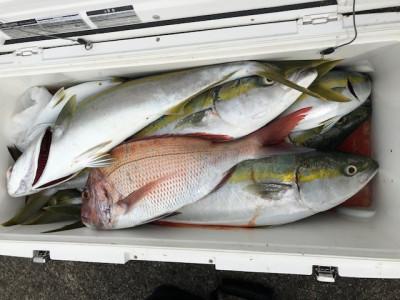 釣り船 黒潮丸の2019年11月24日(日)2枚目の写真