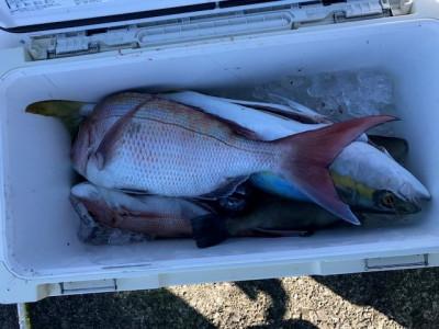 釣り船 黒潮丸の2019年11月29日(金)2枚目の写真
