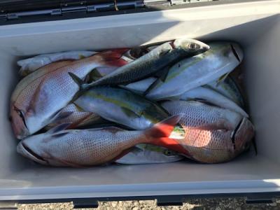 釣り船 黒潮丸の2019年11月30日(土)4枚目の写真