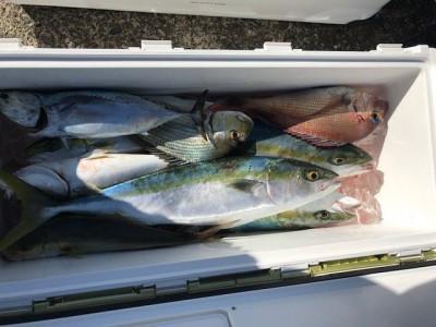釣り船 黒潮丸の2019年11月30日(土)5枚目の写真