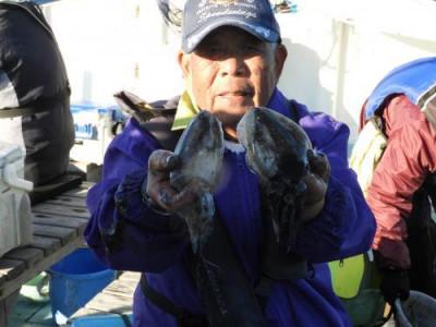 釣具の海友の2019年11月30日(土)1枚目の写真