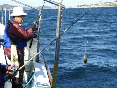 釣具の海友の2019年11月30日(土)2枚目の写真
