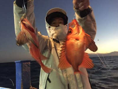 敷嶋丸の2019年12月4日(水)1枚目の写真