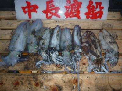 中長渡船の2019年12月14日(土)1枚目の写真