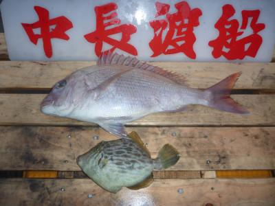 中長渡船の2019年12月14日(土)2枚目の写真