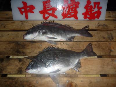 中長渡船の2019年12月21日(土)1枚目の写真