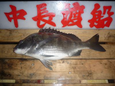 中長渡船の2019年12月21日(土)2枚目の写真