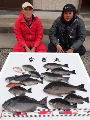 なぎ丸渡船の2019年12月22日(日)3枚目の写真