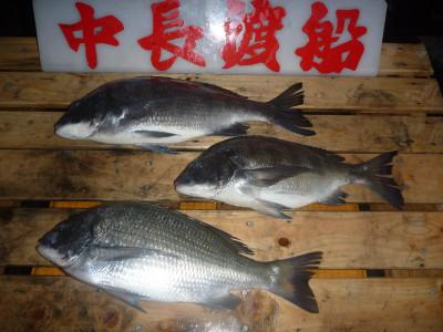 中長渡船の2019年12月23日(月)1枚目の写真