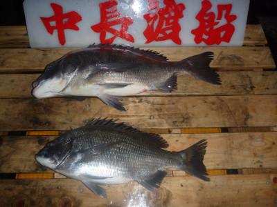 中長渡船の2019年12月23日(月)2枚目の写真