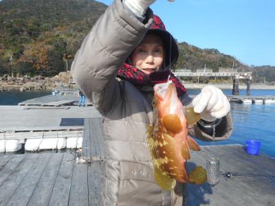 由良海つり公園&釣堀ランドの2019年12月25日(水)1枚目の写真