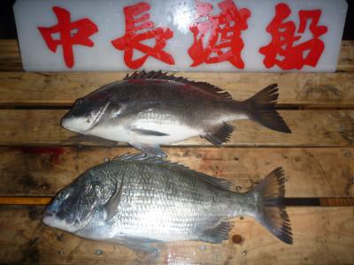 中長渡船の2019年12月25日(水)1枚目の写真