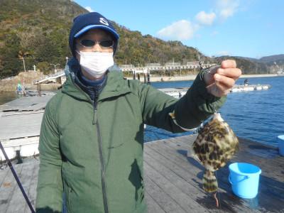 由良海つり公園&釣堀ランドの2019年12月28日(土)2枚目の写真