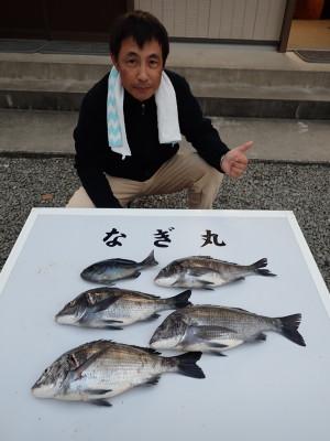 なぎ丸渡船の2019年12月29日(日)4枚目の写真