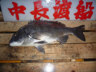 中長渡船の2019年12月29日(日)2枚目の写真
